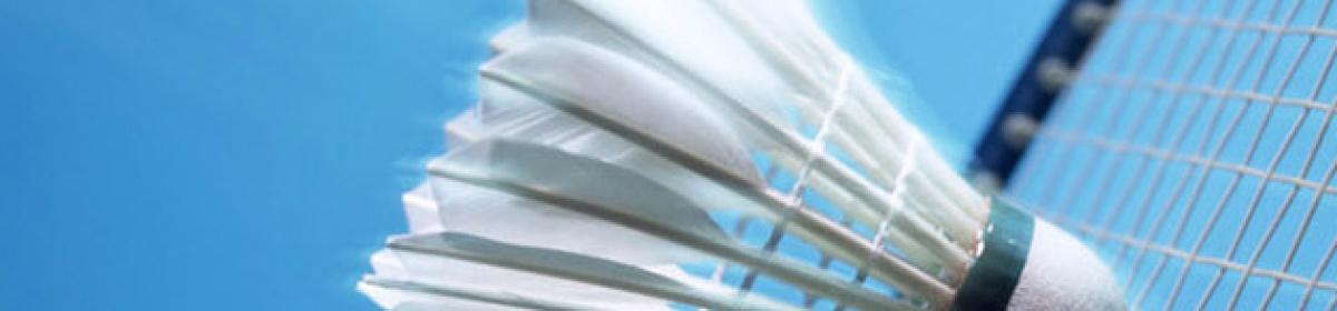 Badmintonvereniging 't Pluumke Lent